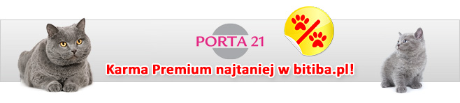 Porta 21