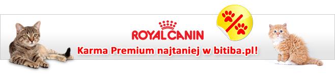 Royal Canin dla kota