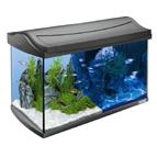 Aquarium & Accessoires