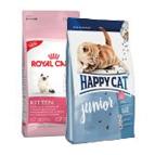 Trockenfutter für Kitten