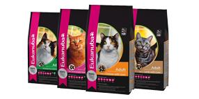 Eukanuba torrfoder för katter