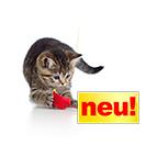 Neues Katzenzubehör