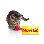Nuovi accessori per gatti