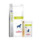 Royal Canin Veterinary Diet Diabetic - DS