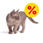 Schnäppchenecke für Katzen