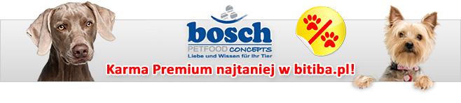 Bosch dla psa