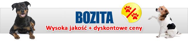 Bozita